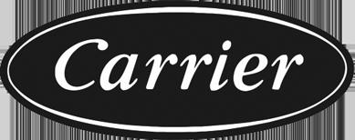 logo3-carrier